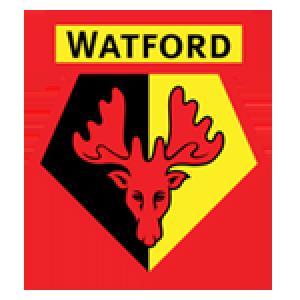 Programme TV Watford