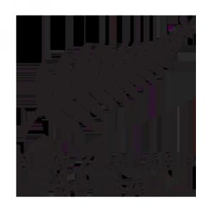 Programme TV Nouvelle-Zelande